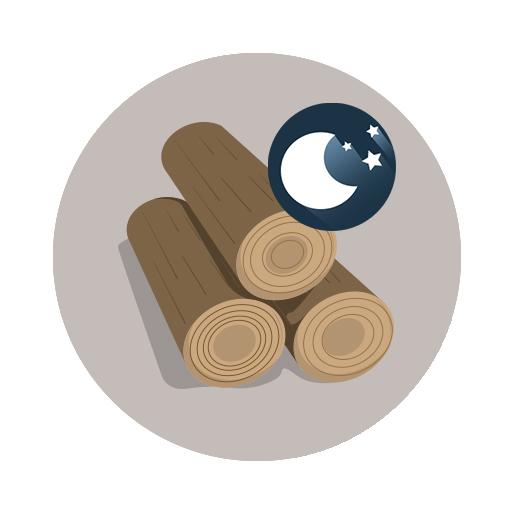 Bois de chauffage compress nuit pack d couvert qualit feu puissance chauffe - Buche de nuit ...